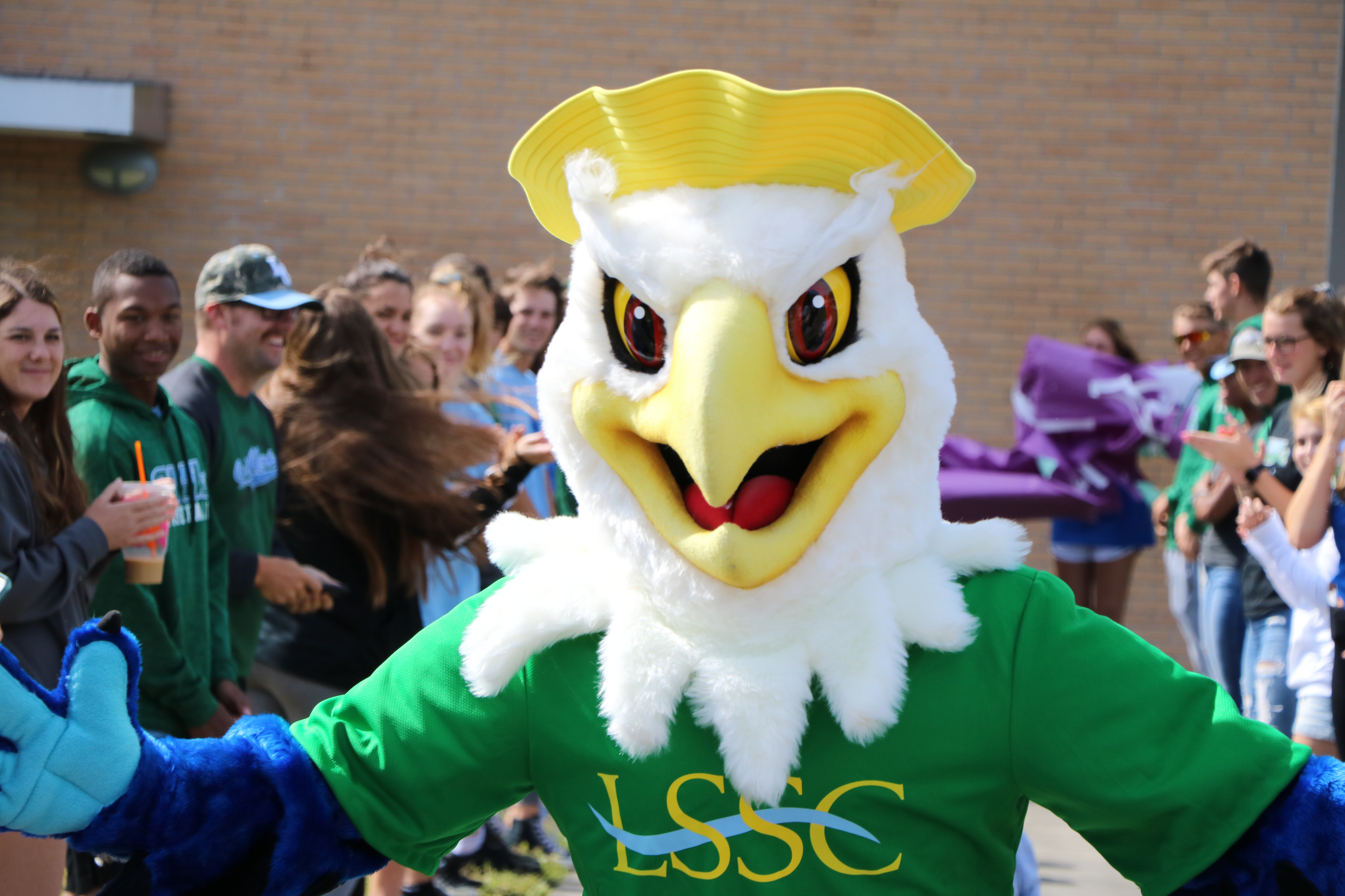LSSC to introduce official Lakehawk mascot