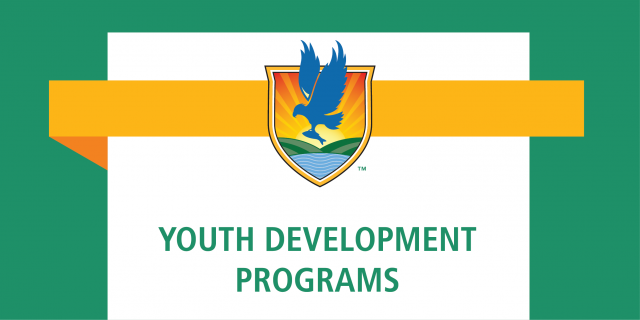 News graphic with LSSC logo and text reading Youth Development Programs